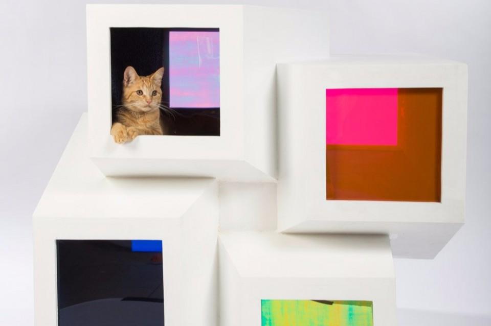 12 Desain Rumah Kucing Unik Ini Ternyata Di Desain Untuk