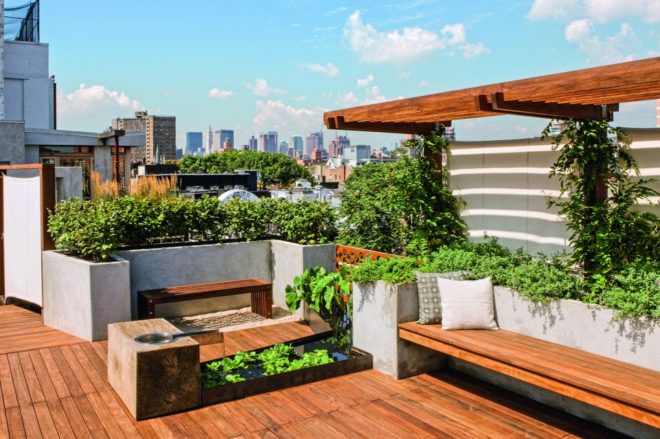 Tips Mendesain Atap Rumah Menjadi Taman Terbuka - Furnizing