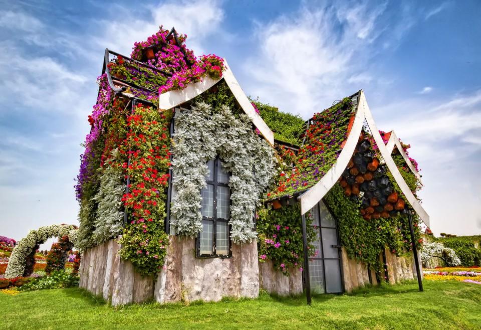 Ternyata 8 Bunga Ini Bikin Taman Rumahmu Yang Gersang Jadi