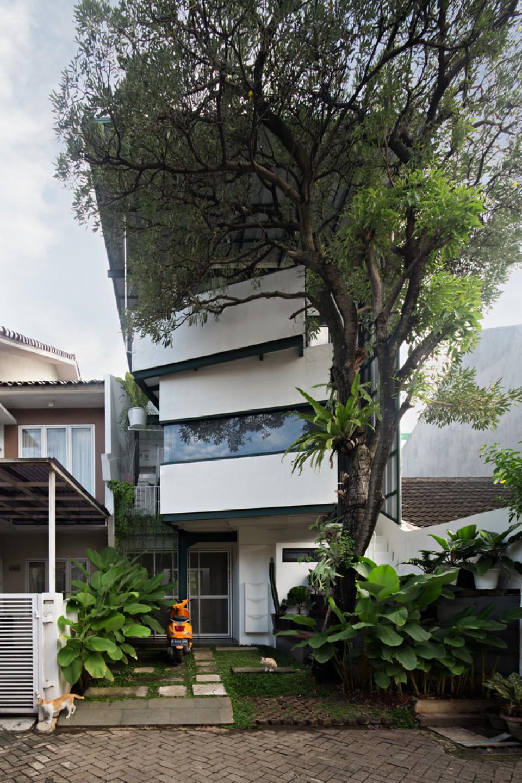 Rumah Tumbuh Konsep Hunian Nyaman Yang Berkembang Di Lahan Terbatas Perkotaan Furnizing